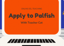 Apply to Palfish in 2021 (Must Know to Get Hired)
