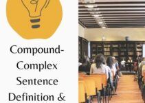 Compound-Complex Sentence Definition and Easy Examples