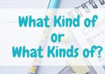 What Kind of Vs What Kinds of? Which is Correct?